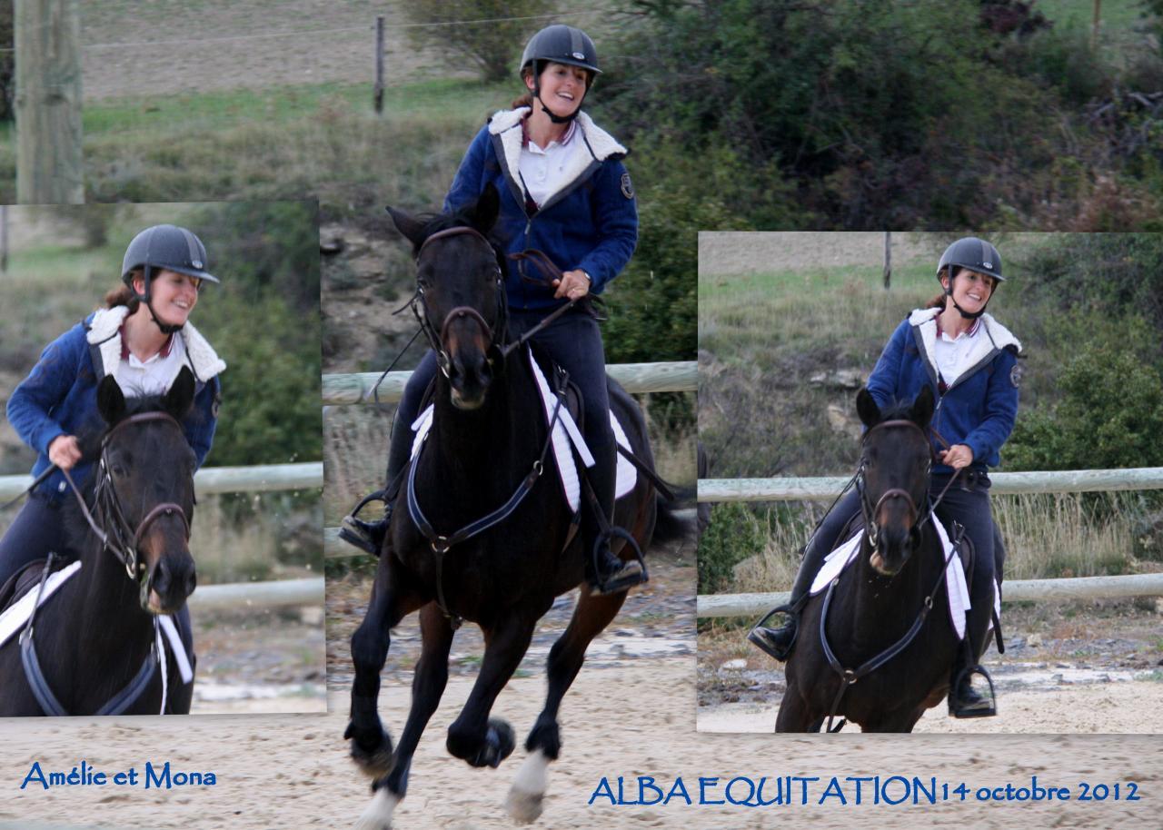 CSO entrainement Alba 14oct201212