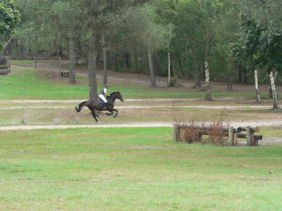 Galop sur le cross