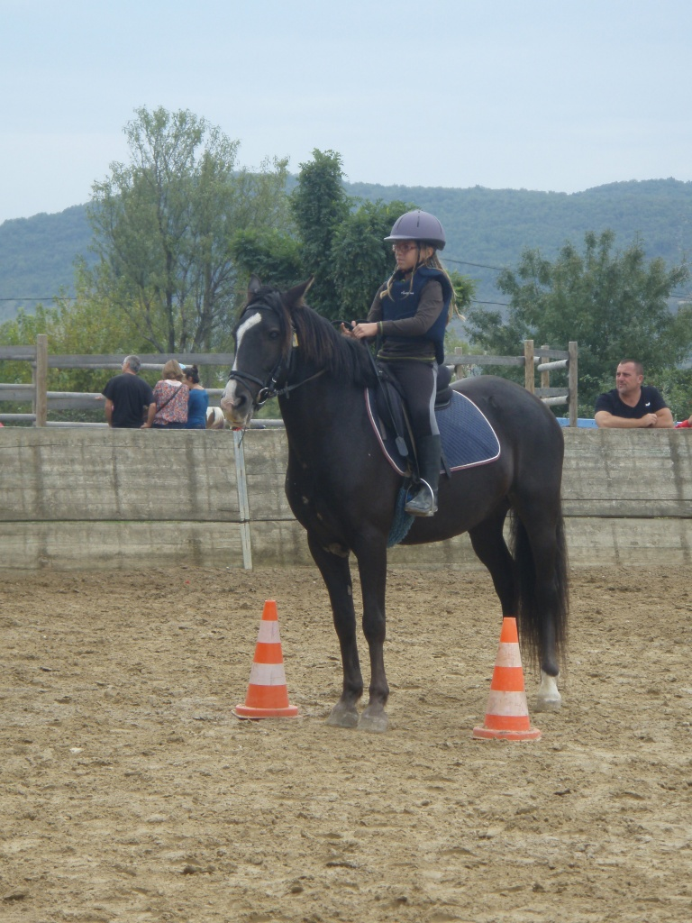 journée cheval 2011 (11)