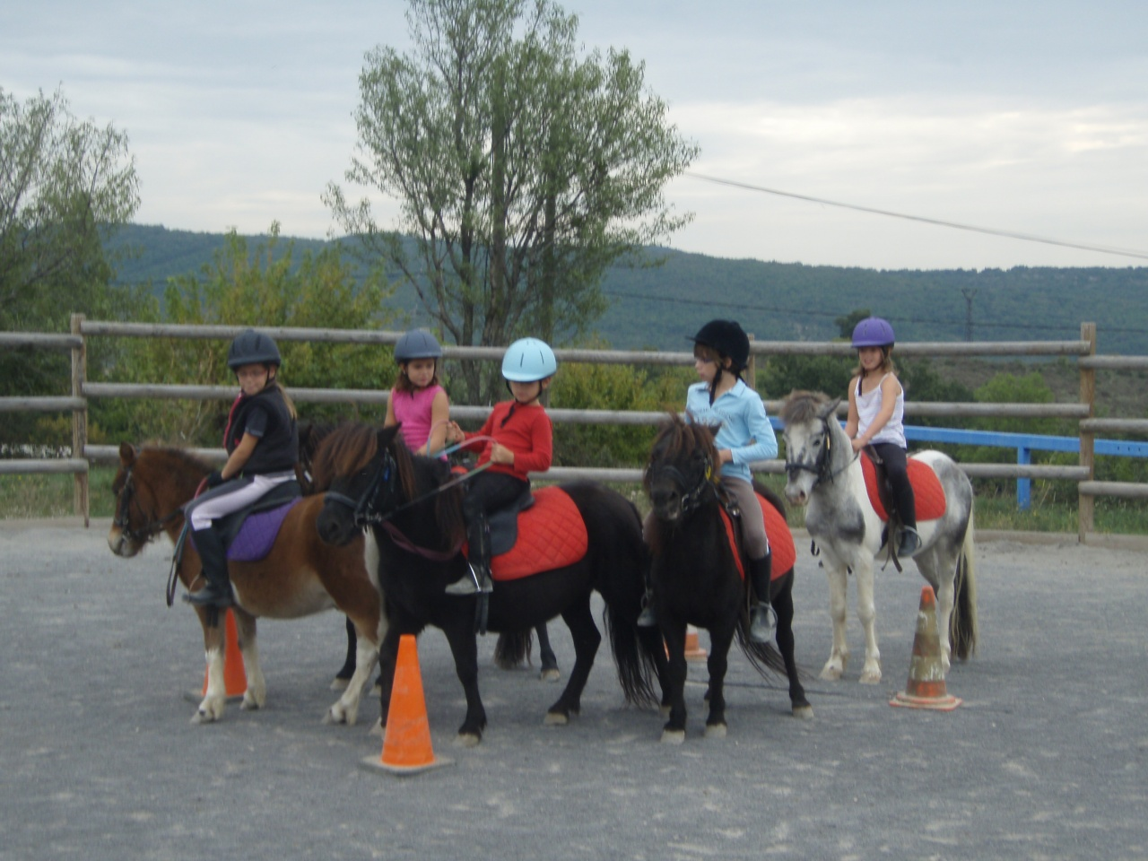 journée cheval 2011 (19)