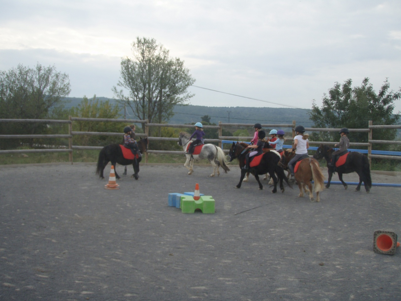 journée cheval 2011 (8)