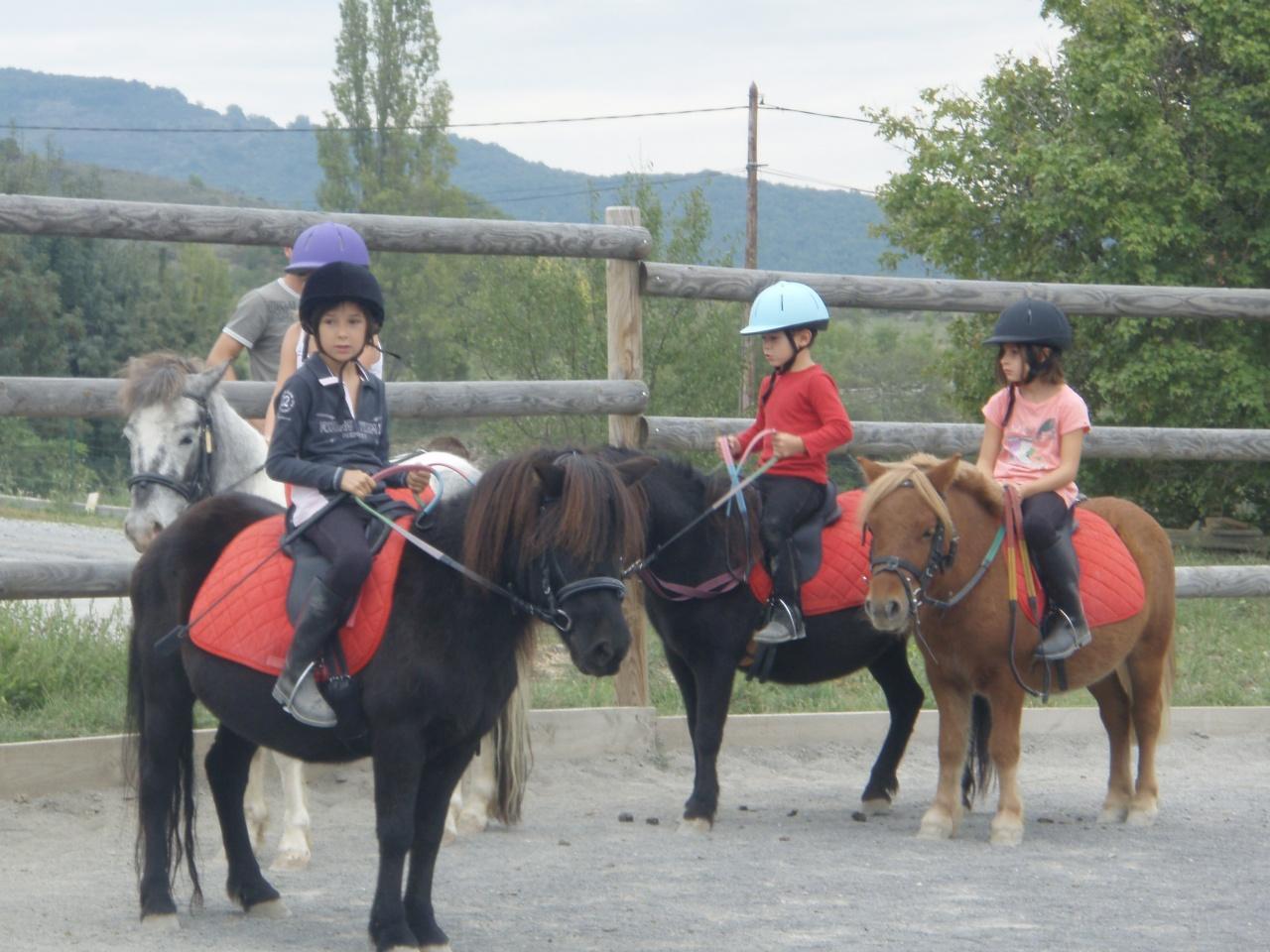 journée cheval 2011
