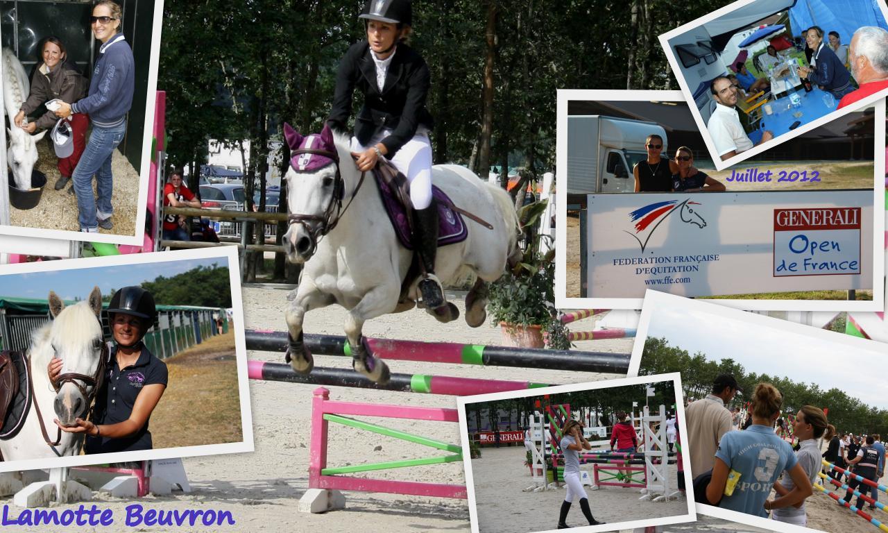 Lamotte Beuvron 26 27 28 juillet 20121