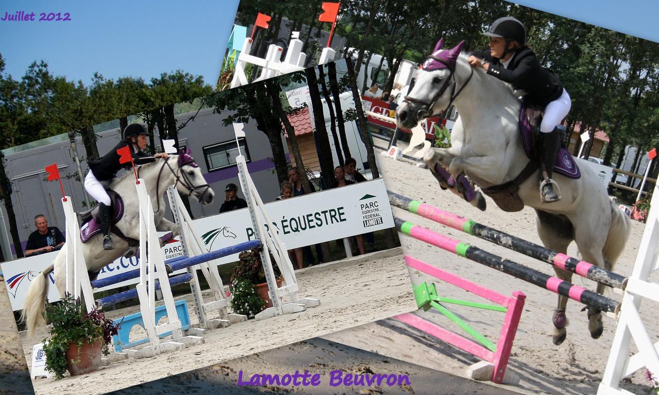 Lamotte Beuvron 26 27 28 juillet 20123