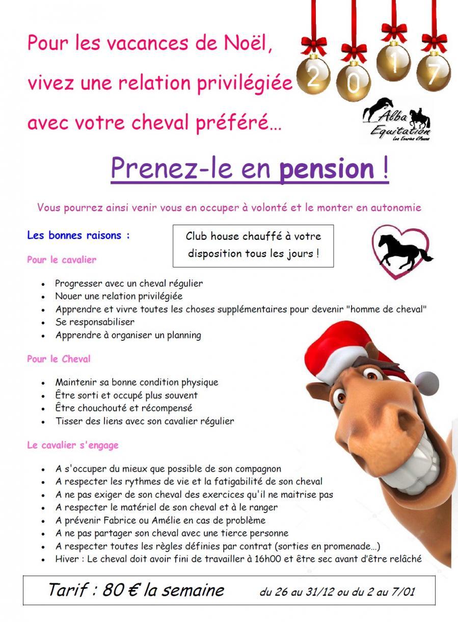 Affiche pension noel