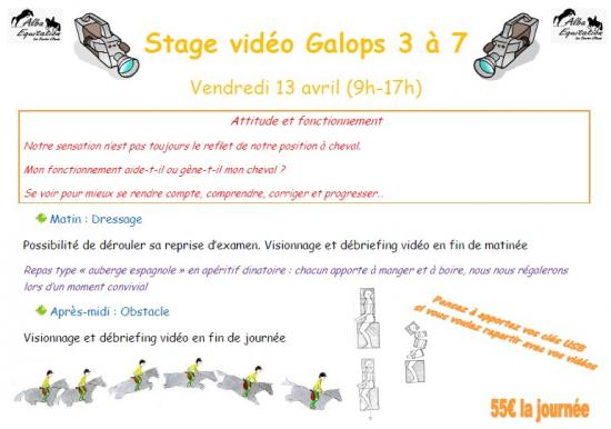 Stage video