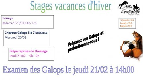 Stages fev 1